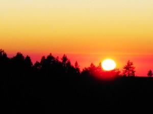 Pinos Sunset