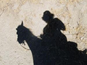 Shadow Dawn & Angel