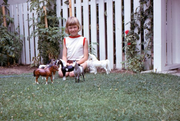 Little Dawn with Horses