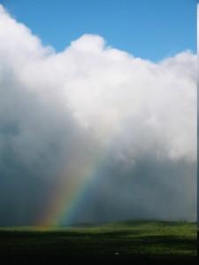 Molokai Rainbow