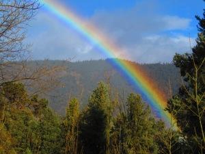 Vibrant California Rainbow