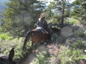 Soul Horse Riding