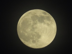 Oahu Moon