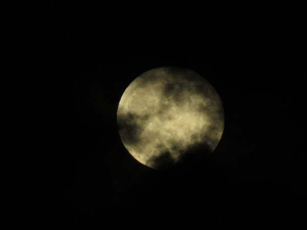 Blotchy Moon