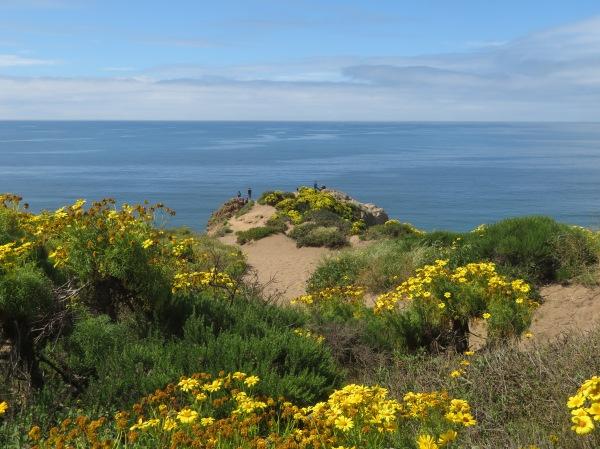 Malibu Springtime Paradise :))