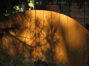 Gateway Shadows