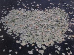 Mom's Leaf Heart :))
